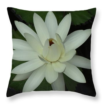 Purity Of The Soul Throw Pillow