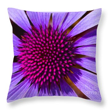 Purple And Pink Daisy Throw Pillow