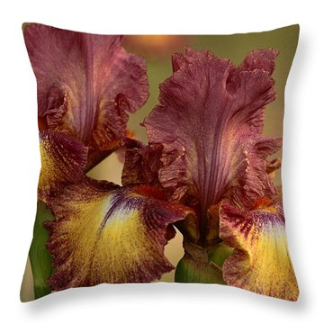 Throw Pillow featuring the photograph Purple And Yellow Bearded Iris by Sheila Brown