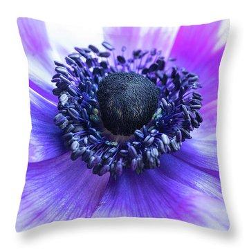 Purple Anemone Throw Pillow