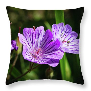 Purple Attraction Throw Pillow