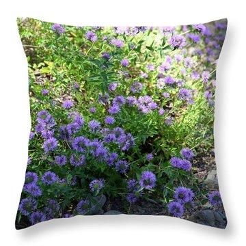 Purple Bachelor Button Flower Throw Pillow