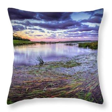 Purple Bay Throw Pillow