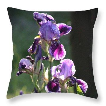 Purple Bearded Iris Throw Pillow