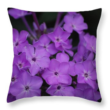 Purple Blossoms Throw Pillow by David Lane