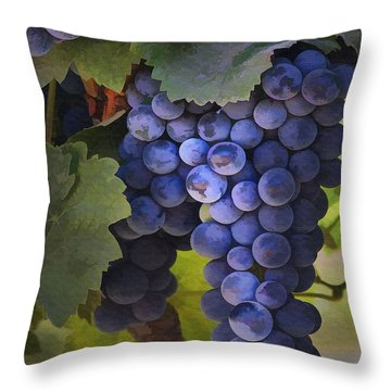 Purple Blush Throw Pillow by Sharon Foster