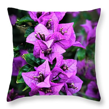 Throw Pillow featuring the photograph Purple Bougainvillea by Robert Bales