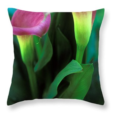 Purple Calla Duet Throw Pillow by Kathy Yates