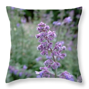 Purple Cat Mint Throw Pillow