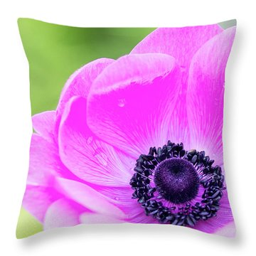 Throw Pillow featuring the photograph Purple Center by Rebecca Cozart
