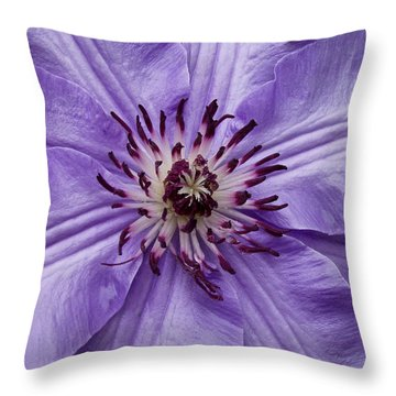 Purple Clematis Blossom Throw Pillow