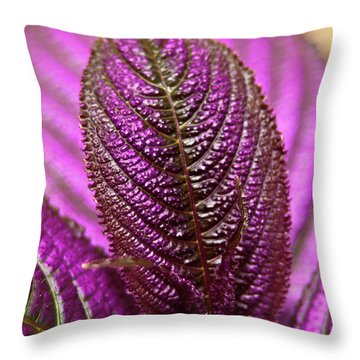 Purple Coleus Throw Pillow by Carolyn Marshall