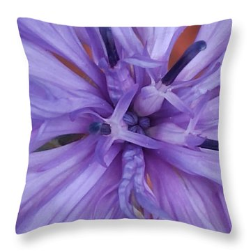 Purple Colorado Wildflower In Macro Throw Pillow