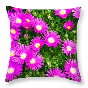 Throw Pillow featuring the photograph Delosperma Lavisiae by Craig B