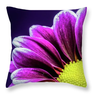 Purple Daisy Being Shy Throw Pillow