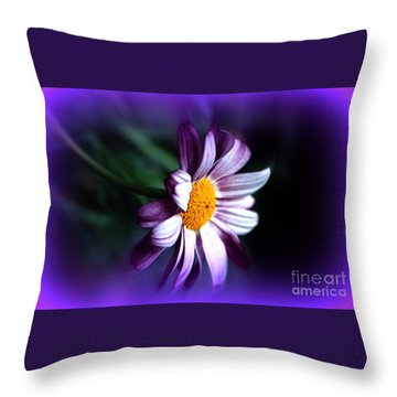 Throw Pillow featuring the photograph Purple Daisy Flower by Susanne Van Hulst