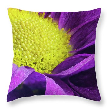 Purple Daisy In The Garden Throw Pillow