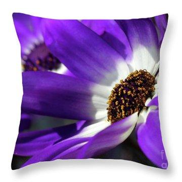 Purple Daisy Throw Pillow by Sabrina L Ryan