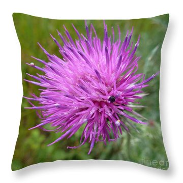 Purple Dandelions 2 Throw Pillow