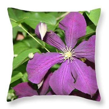 Purple Delite Throw Pillow