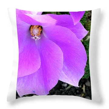 Purple Flower 1 Throw Pillow