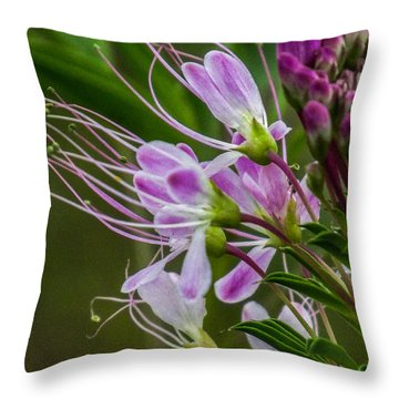 Purple Flower 6 Throw Pillow