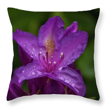 Throw Pillow featuring the photograph Purple Flower 7 by Timothy Latta