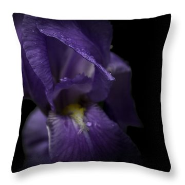 Throw Pillow featuring the photograph Purple Flower by Ryan Photography