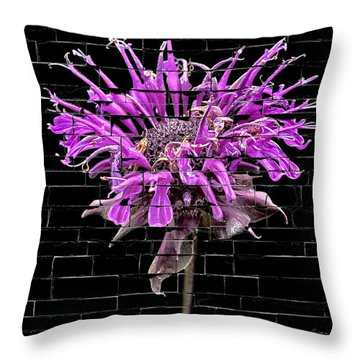 Purple Flower Under Bricks Throw Pillow by Walt Foegelle