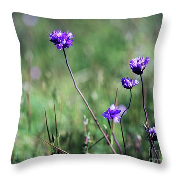 Throw Pillow featuring the photograph Purple Flowers by Jim and Emily Bush