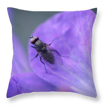 Purple Fly Throw Pillow
