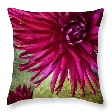 Rai Of Light Throw Pillow