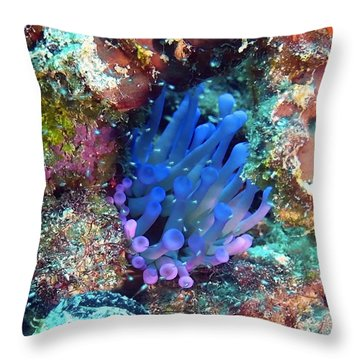 Purple Giant Sea Anemone Throw Pillow by Amy McDaniel