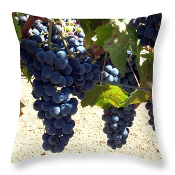 Purple Grapes On Vine Throw Pillow