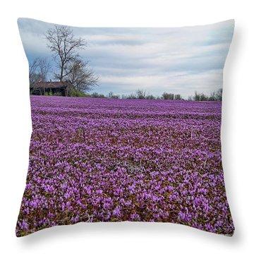 Throw Pillow featuring the photograph Purple Haze by Cricket Hackmann