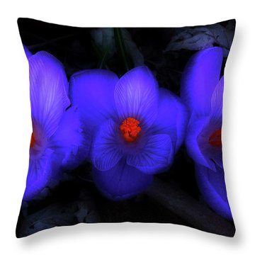 Beautiful Blue Purple Spring Crocus Blooms Throw Pillow