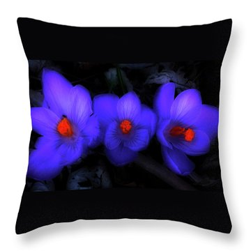 Beautiful Blue Purple Spring Crocus Blooms Throw Pillow