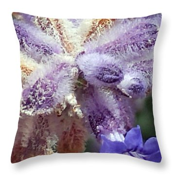 Purple Iced Blue New Mexico Wildflower Throw Pillow