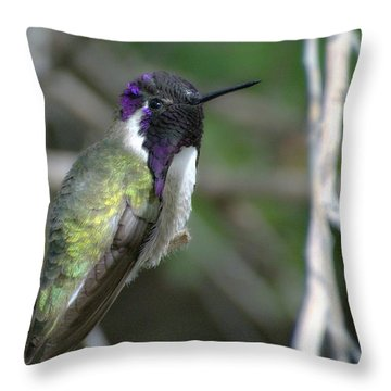Throw Pillow featuring the photograph Purple Iridescence 2 by Fraida Gutovich