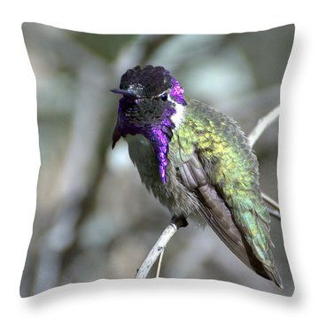Throw Pillow featuring the photograph Purple Iridescence  by Fraida Gutovich
