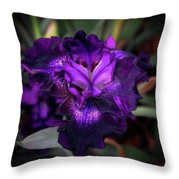 Purple Iris 5994 H_2 Throw Pillow