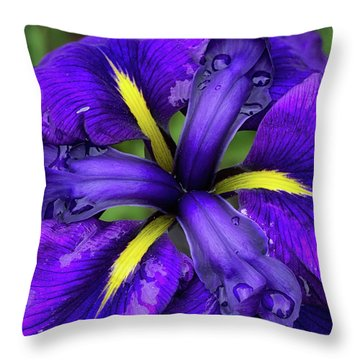 Purple Iris Centre Throw Pillow