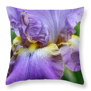 Purple Iris Flower Throw Pillow