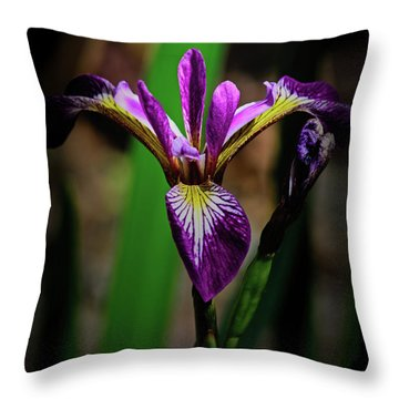 Throw Pillow featuring the photograph Purple Iris by Tikvah's Hope