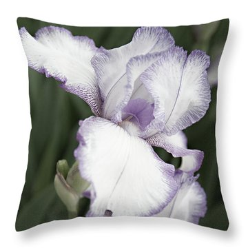 Purple Is Passion Throw Pillow