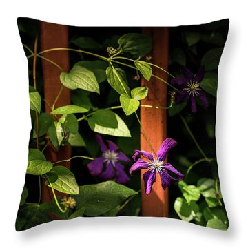 Throw Pillow featuring the photograph Purple Jackmanii Clematis by Onyonet  Photo Studios