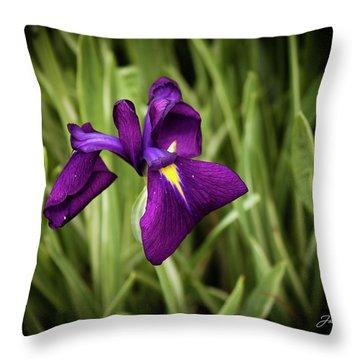 Throw Pillow featuring the photograph Purple Japanese Iris by Joann Copeland-Paul