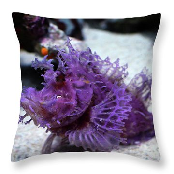 Purple Lace Throw Pillow