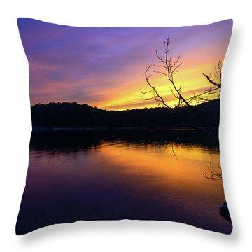 Purple Lake Throw Pillow