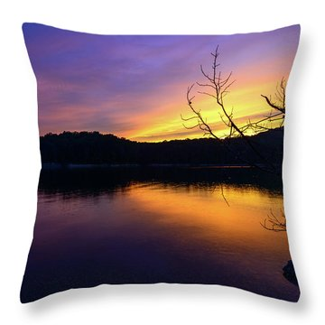 Purple Lake Throw Pillow